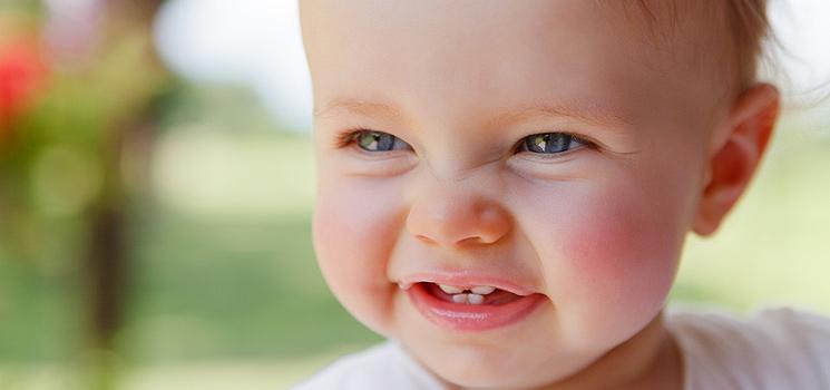 9fb4962b5093ab Chamomilla  Natürliche Hilfe für Schmerzen beim Zahnen